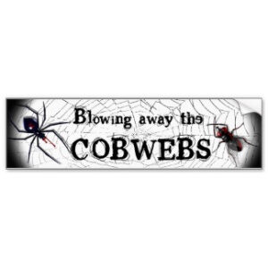 Blowing away the cobwebs